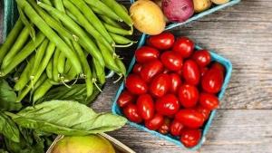 生鲜蔬菜配送公司前景怎么样